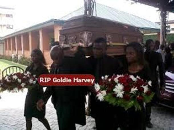goldie-harvey-3